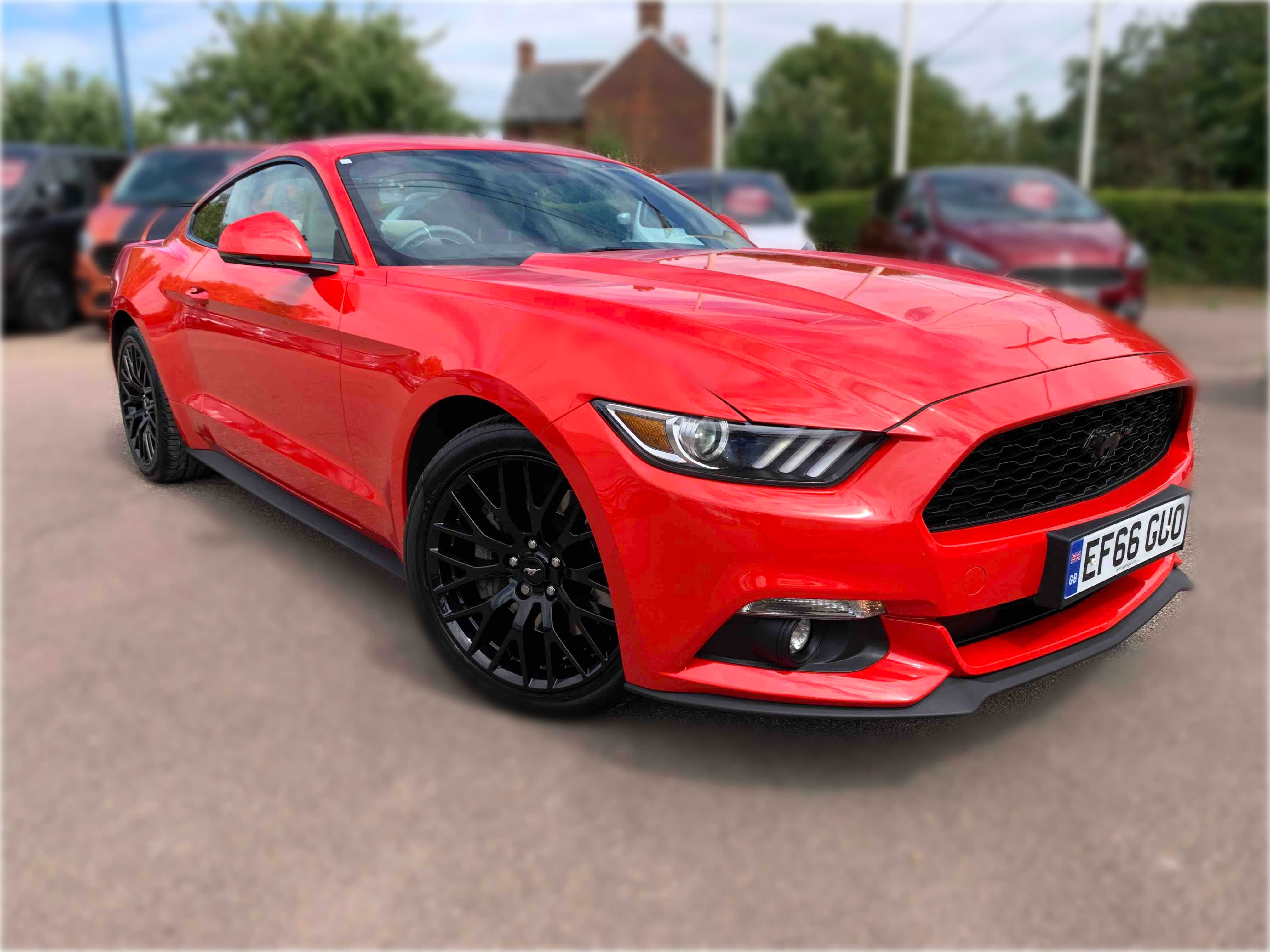 2.3 EcoBoost Used Ford Mustang Braintree